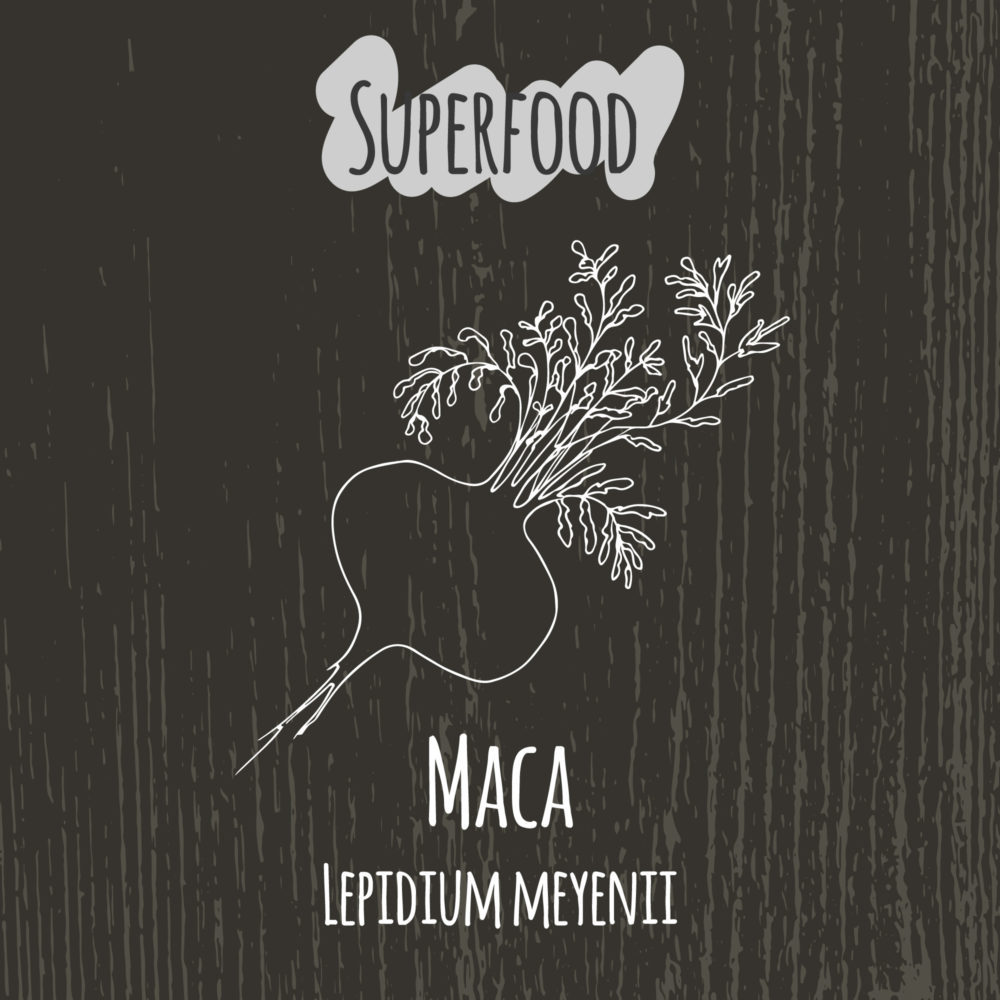 The story of a miracle root: Maca