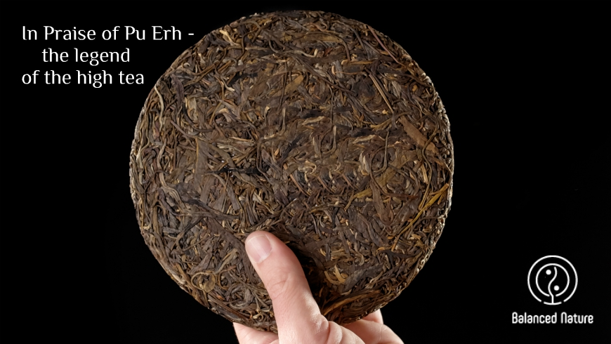 In Praise of Pu Erh – the legend of the high tea